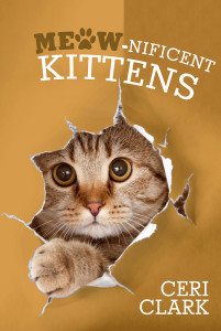 Meownificent Kittens Front Cover