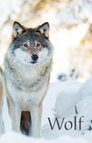 Wolf: A discreet password book for people who love wolves (Disguised Password Book Series)