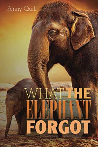 What the Elephant Forgot: A Disguised Password Book With Tabs to Protect Your Usernames, Passwords and Other Internet Login Information   Elephant Design 6 x 9 inches (Quill Password Books)