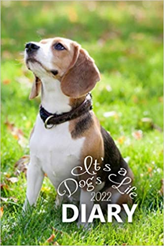 It's a Dog's Life 2022 Pocket Diary: The 12 Month, Week to View, Large Print Diary for January to December 2022 (4 x 6 inch)